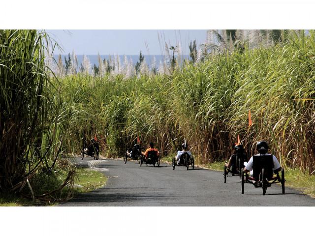 Photo OTI de l'Est - Bureau d'Information Touristique de Bras-Panon